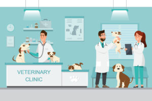 Free veterinary assistance for low income families